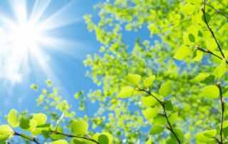 Positive Thinking Sunny Sky
